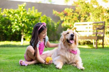 Como receber os netos em casa? 5 dicas para transformar as férias em família!