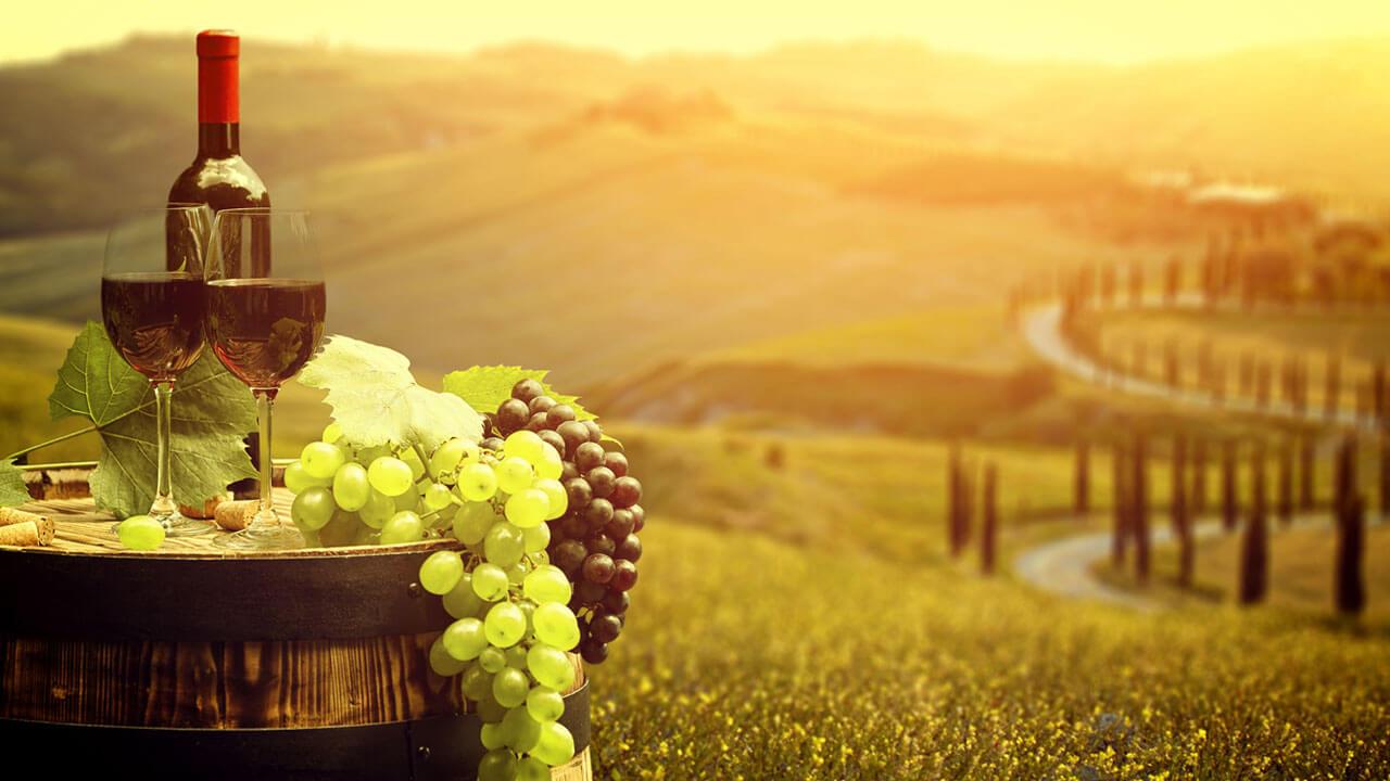 Vinhos para o inverno: quais os melhores para essa estação?